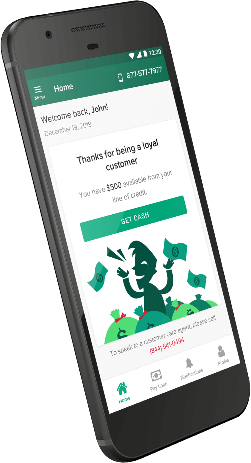 Example of an account within the Check Into Cash app shown on a mobile screen