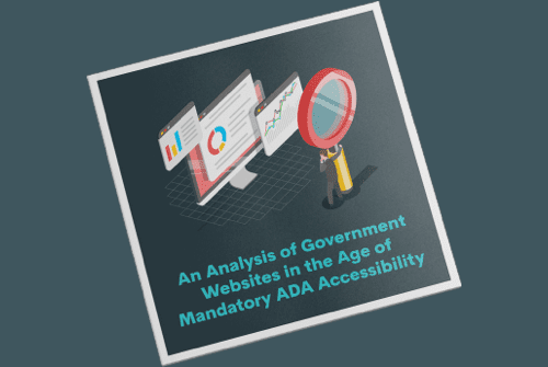 White-Paper-An-Analysis-Of-Government-Websites